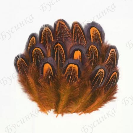 Перо окрашенное для декорирования, Оранж. 4-8 см. 10шт.